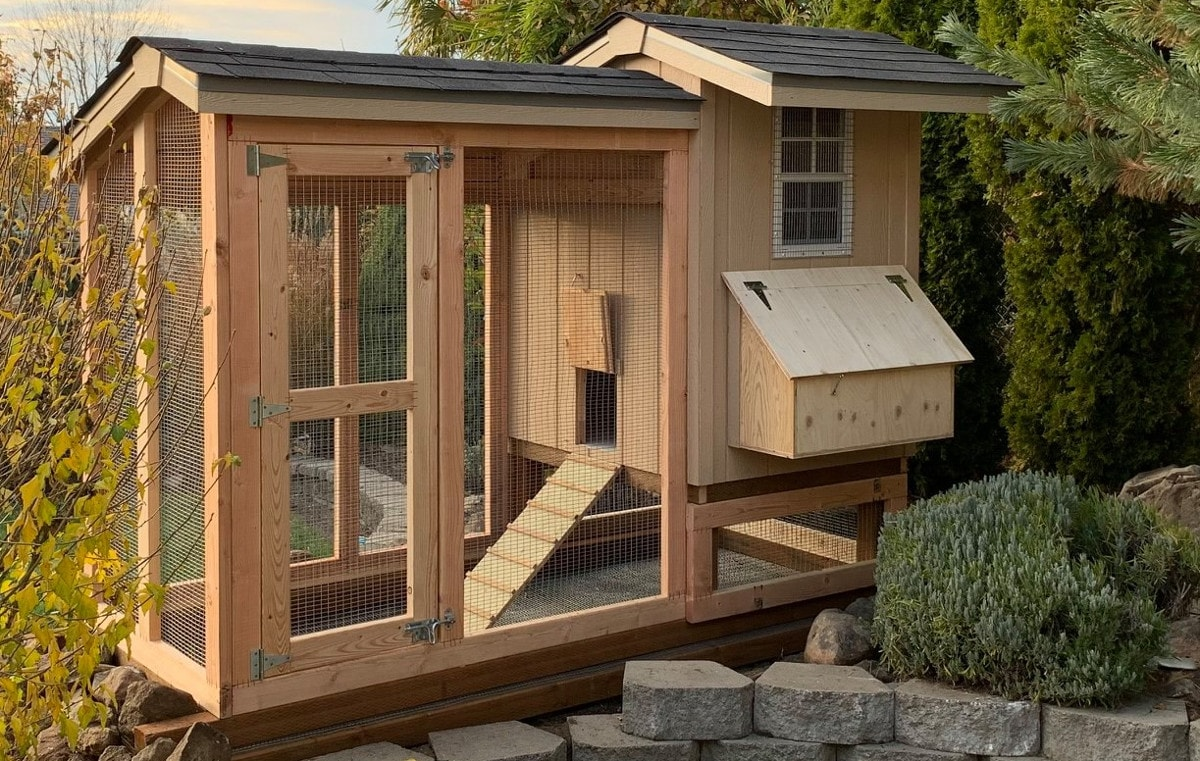 A chicken coop showing mesh covered window